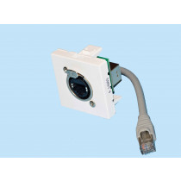 Plastron equipe cable Embase Neutrik NE8FDP RJ45 Cat.6 F / RJ45 F de 0.2 m