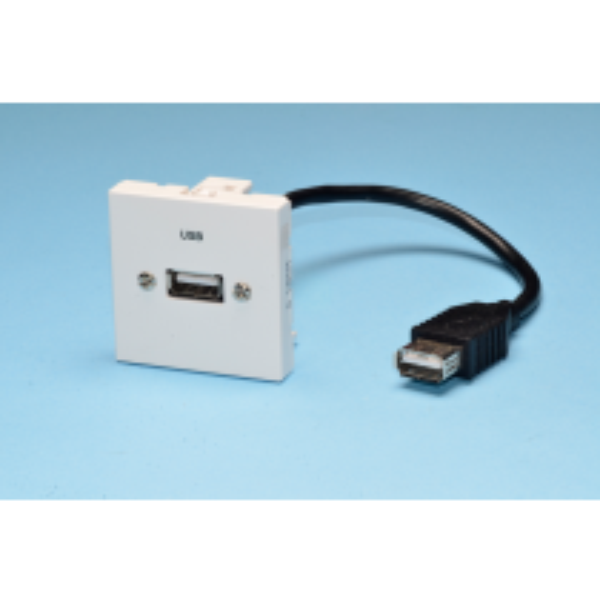 PLA.USBAAF-02 Plastron équipé câblé USB-A Femelle / Femelle de 0,2 m